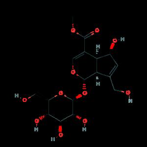 Deacetylasperulosidic acid methyl ester 52613-28-2